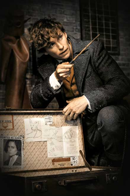 Newton Scamander with a huge bag magic splelling.